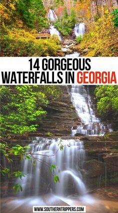Usa Travel Guide, Travel Usa, Travel Tips, Georgia State Parks, Georgia Usa, Florida Travel, California Travel, Waterfalls In Georgia, Best States To Visit