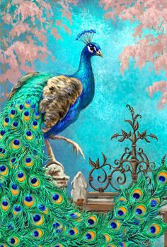 Peacock blues.