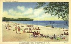 Westfield, New York, NY Post Card Postcard in Westfield, New York vintage postcard from our collection of over 2 Million old antique post cards of US States, Cities and Town Views.