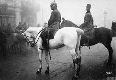 100 de ani. Marşul spre Marea Unire  - A doua bătălie de la Jiu - epilog