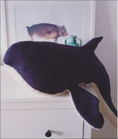 Bio stuffed whale handmade in germany Wal, Nursery Room, Plushies, Your Child, Germany, Inspire, Toys, Friends, Children