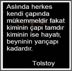 Aslında herkes kendi çapında mükemmeldir... Tolstoy sözleri