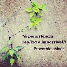 #frases #inspiracao                                                                                                                                                      Mais