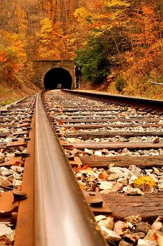 Old railroad tunnel