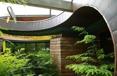 Lofted Forest Home: Organic Curves & Natural Materials