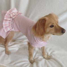 Vestido de perro en rosa con volante a cuadros y lazo, ropa perros. Diseño  exclusivo de Mucka Pets. de MuckaPets en Etsy