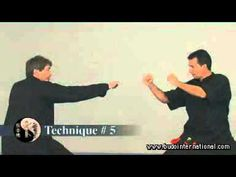 Choy Li Fut Golden Leopard and Tiger Forms - YouTube
