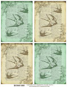 Ephemera's Vintage Garden: Free Printable: Vintage Dictionary Birds