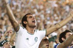 Palmeiras !