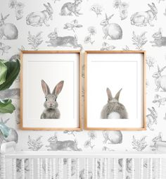 Baby Bunny Heads and Tails Prints - Set of 2
