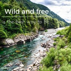 Nature frees the soul in such many ways. #traveltoconserv book online at www.patagoniatripplanner.com Wild And Free, Books Online, Good Things, River, Nature, Outdoor, Outdoors, Naturaleza, Rivers