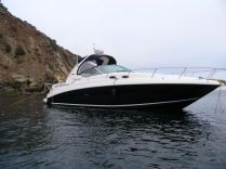 Sea Ray Sundancer  Miss my summers were every weekend was spent on a boat.