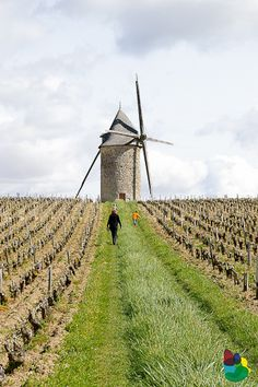 La Gironde : Le Moulin de Courrian