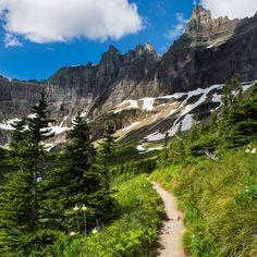 8 Fantastic Hikes In Glacier National Park - TravelAwaits Cedar Forest, Lake Mcdonald, Park Around, Best Hikes, Round Trip, Great View, Hiking Trails, Montana, Surfing