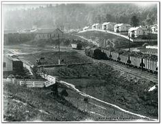 image white oak coal company