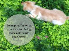 Be inspired by what you love and bring those colors into your home.
