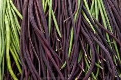 Long Bean Chinese Green Noodle