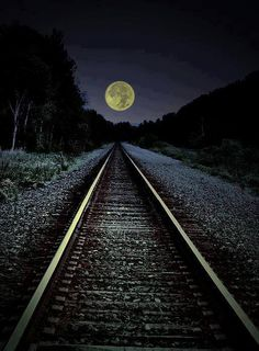 moonlight rail (515×700)