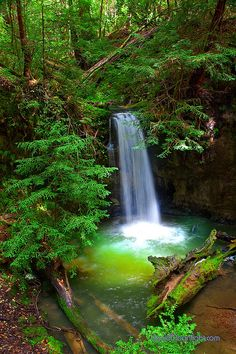 Sempervirens Waterfall - California's Big Basin State Park