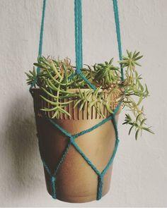 Vaso de pote plástico de macarrão instantâneo