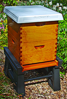 how to keep bee hives