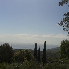 #panorama #ortoelbano #eremo di s. #Caterina #Rionellelba #RioElba #isoladelba #landscape #Ilikeitaly #instatuscany #instaElba #tuscany
