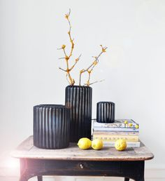 You just gotta love how the Omar Indigo/Brown contrasts with the yellow twig and Lemons!