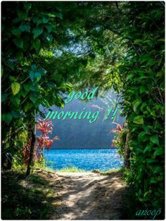 Have A Blessed Day ☺