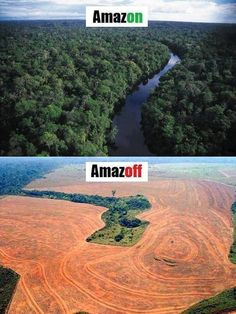 Photo of the Week: A clever bit of wordplay from Greenpeace International - they are campaigning for an end to deforestation in the Amazon by 2015 and globally by 2020. Help them and sign the pledge! Click on the photo to find out how!