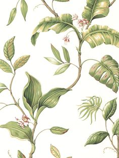 Tropical Foliage Wallpaper | Sand Dollar | AmericanBlinds.com