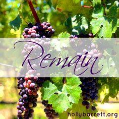 Remain in Me | Holly Barrett #SundayReflection #ReclaimingaRedeemedLife #BibleGateway #bgbg2