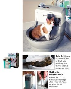 cat genie self cleaning cat litter box
