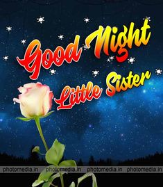 good night image for sister Good Morning Sister Images, Good Night Sister, Good Night My Friend, Good Night Images Hd, Beautiful Good Night Images, Good Night I Love You, Good Night Sweet Dreams, Good Morning Good Night, Good Night Quotes