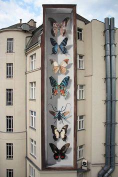 Painted on the wall: butterfly exhibits including a showcase with a effect - Street-Art (Murals, Graffiti, Kunst, Installationen) - 3d Street Art, Murals Street Art, Urban Street Art, Best Street Art, Amazing Street Art, Street Art Graffiti, Street Artists, Amazing Art, Graffiti Artwork