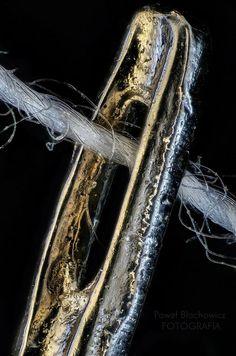 Needle eye, extreme macro photography (by Pawel Blachowicz) Micro Photography, Fabric Photography, Close Up Photography, Abstract Photography, Mobile Photography, Creative Photography, Artistic Photography, Fine Art Photography, Amazing Photography