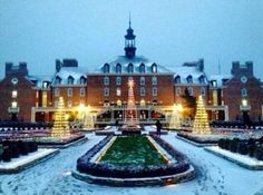 Oklahoma State University celebrates the holidays in the prettiest of ways