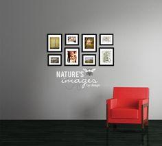 Cherry Blossom Series - Cherry Blossom Prints - home decor - dreamy prints - 4 - 8x10, 4 - 5x7, Nature Photography, Flower Photographs. $148.00, via Etsy.