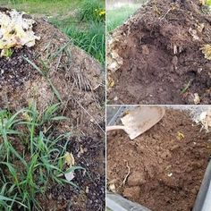 #Composting your kitchen scraps and lawn cuttings is the best way to naturally add #nutrients back into your #garden #soil. After a year of #nature taking its course your garbage turns into beautiful black #dirt... Nothing wasted! #compost #earthfriendly