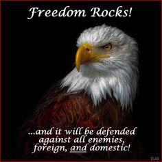 Freedom Rocks Annelize Joubert Eagles Quotes