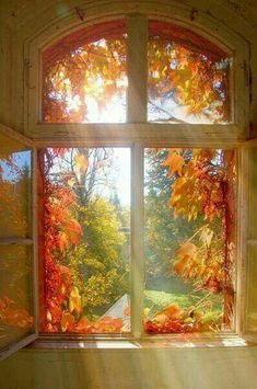 autumn scenery sunlight through the window Beautiful World, Beautiful Places, Beautiful Pictures, Heaven Pictures, Autumn Day, Autumn Home, Autumn Leaves, Autumn Morning, Golden Leaves