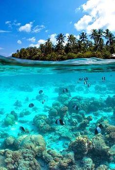 Underwater......I love to snorkel!