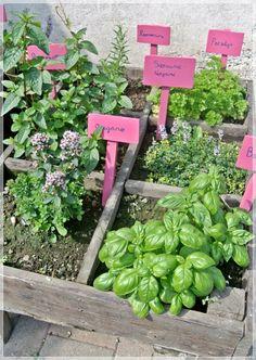 Garden Planning, Garden Plants, Gardening Tips, Zero Waste, Garden Ideas, Wallpaper, Decor, Decoration, Wallpapers