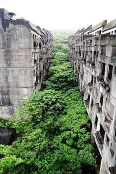 malformalady: Overgrown apartment blocks on Hashima Island. Meaning 'Battleship Island' in English, Hashima is one of 505 uninhabited islands in the Nagasaki Prefecture, about 15km from Nagasaki itself. It earned its nickname from its resemblance to a military warship.
