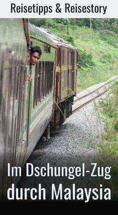 """Eine Reise mit dem Dschungel-Zug in Malaysia (""""Jungle-Railway"""") ist ein besonderes Erlebnis. Reisebericht, Reisetipps, Fahrpläne und Erfahrungen mit der besonderen Eisenbahn. #schienenreisen"""