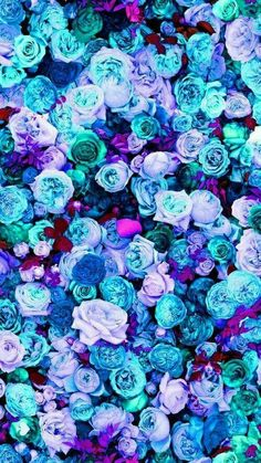 #flores #roxo #flowers #papeldeparede#wallpaper