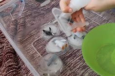 Penguin Rescue Sensory Tub (freeze ocean animals in ice - how can you rescue them?)