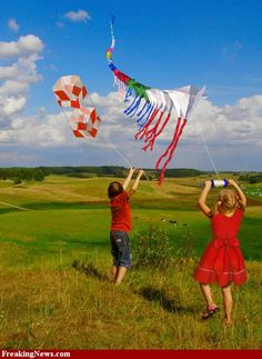 Love string of kites!  Kite Flying hi-res pictures