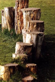 Cromarty Image Library - Wooden stepping 'stones' in the Park
