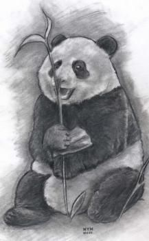 How to Draw a Realistic Panda, Draw Real Panda, Step by Step, Realistic, Drawing Technique, FREE Online Drawing Tutorial, Added by finalprodigy, October 6, 2010, 8:16:53 pm