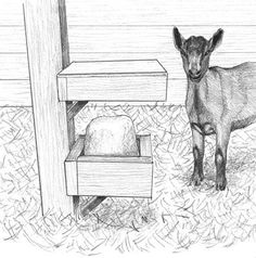 How to build a mineral block holder for your goats.  #goatvet would ensure there were holes in the bottom bit in case a goat urinated in it.